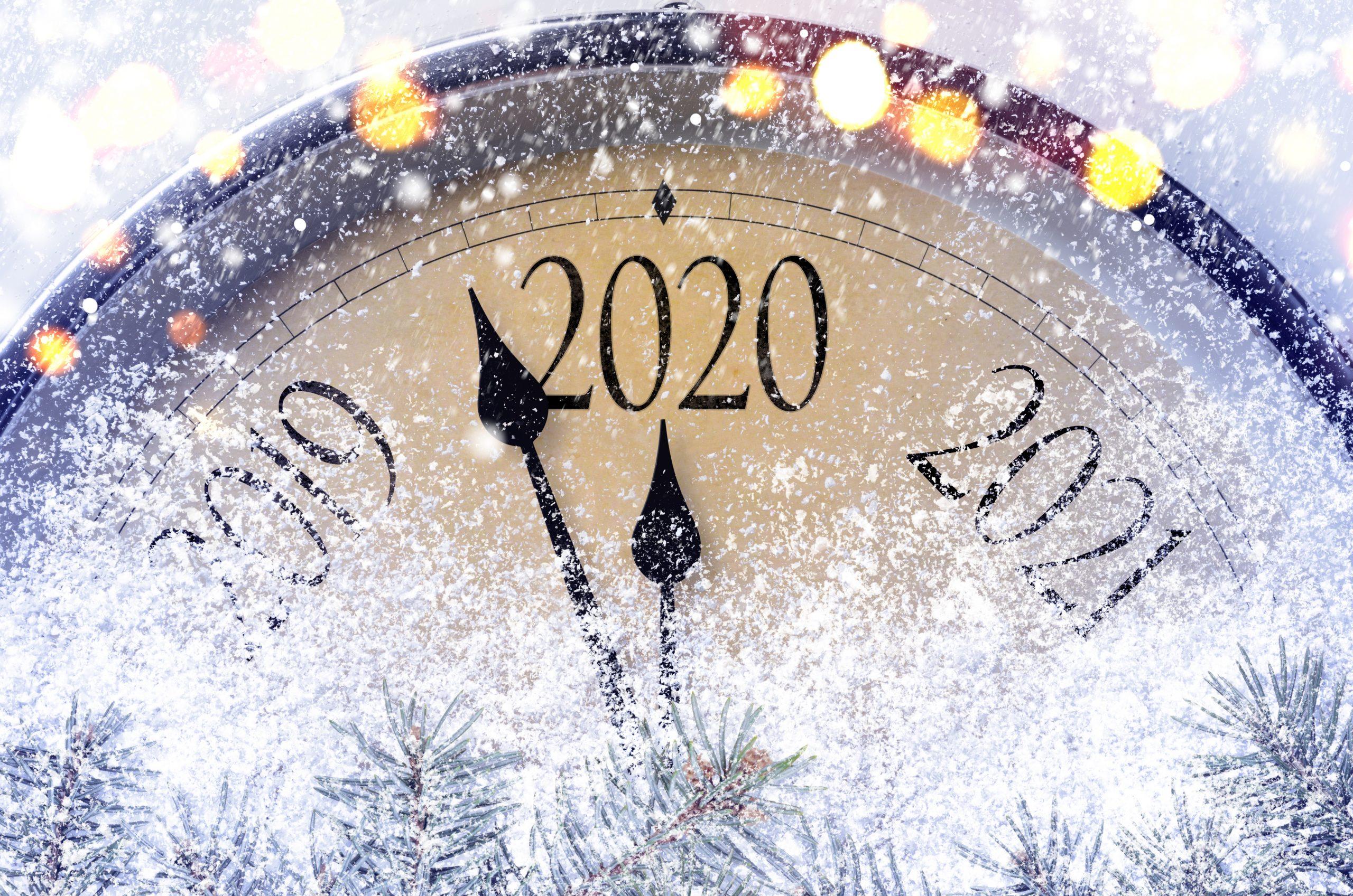 2020-godina-silni-jeni
